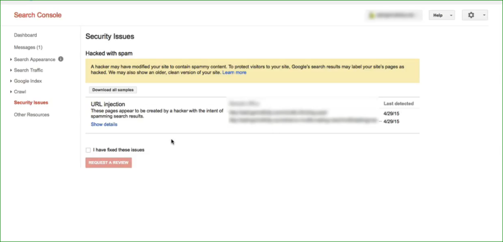 google-search-console-security-issue-detail